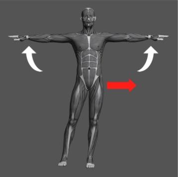 操体法基本運動1b