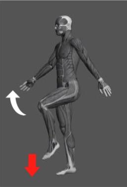 操体法基本運動2