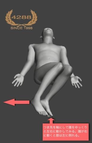 操体法/膝倒しの別法
