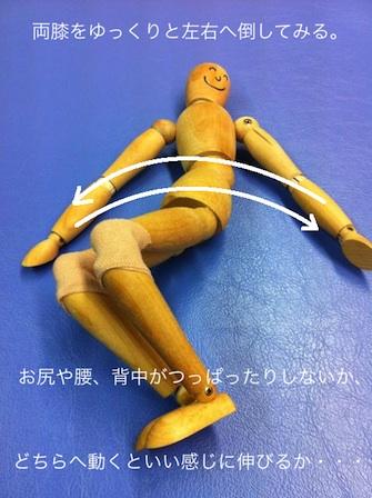 自分で腰痛を解消する方法その6-1