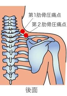 肋骨後ろ側